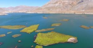 Adıyaman Çat Baraj göletindeki bu adacıklar yerinde durmuyor